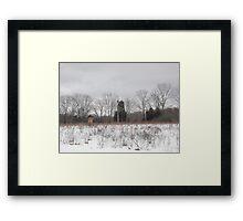 Peace Valley Park Framed Print