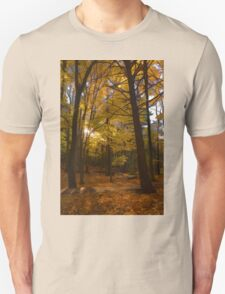 Autumn Forest Glow - Impressions Of Fall T-Shirt