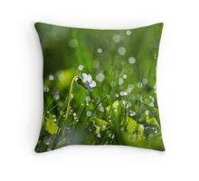 Fresh Dew Throw Pillow