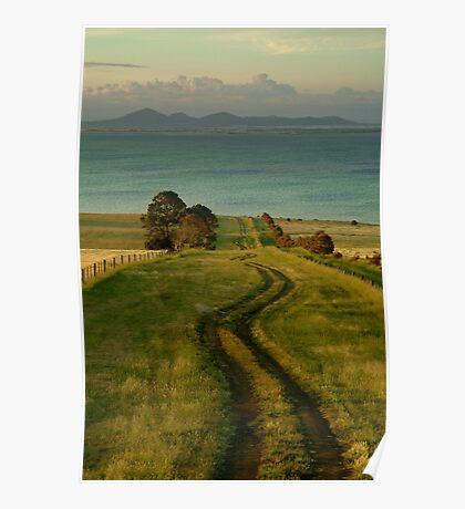 Spray Farm Lane,Bellarine Peninsula Poster