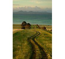 Spray Farm Lane,Bellarine Peninsula Photographic Print