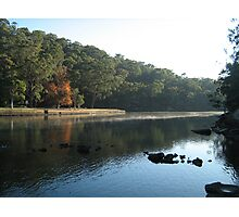 Audley, Royal National Park Photographic Print