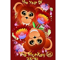 Two Year Of  The Monkey Photographic Print