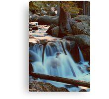 CASCADE,MT EVANS Canvas Print
