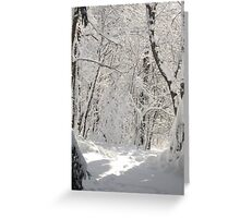 And in the Stillness, Beauty Spoke... Greeting Card