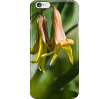 Trout Lily Flowers iPhone Case/Skin