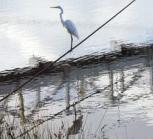 Bird on the Wire - Egret at Erskine River Sticker