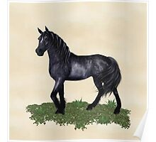 A Black Horse Called Star Poster