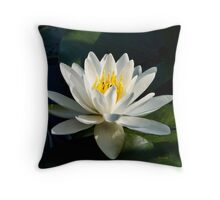 White Water Lily Flower Throw Pillow