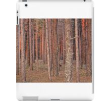 Woodlands at Dusk iPad Case/Skin