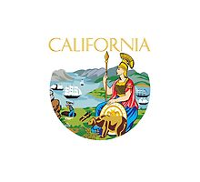 California seal by igorsin