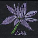 PURPLE FLOWER by NEIL STUART COFFEY