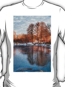 Cold Ice Trio - Lake Ontario Impressions T-Shirt