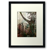 tree and gate Framed Print