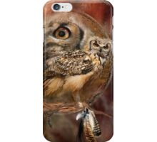 Dream Catcher - Owl Spirit iPhone Case/Skin