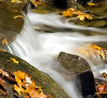 Waterfall Abstract by Christina Rollo
