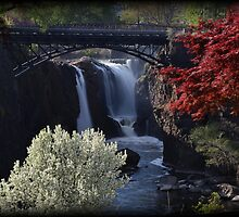 Great Falls Spring Foliage by Tim Holmes