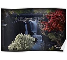Great Falls Spring Foliage Poster