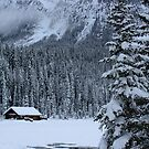 Cabin in the Snow by Alyce Taylor
