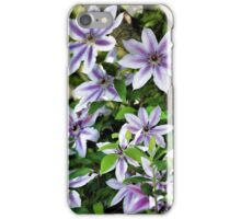 Clematis (Nelly Moser) iPhone Case/Skin