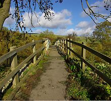 Footbridge to the Dales by Trevor Kersley
