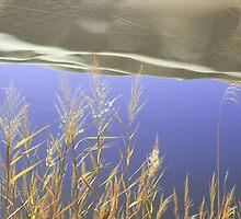 Lybia, Sahara desert, Ubari Lake by Jean-Baptiste Guyot