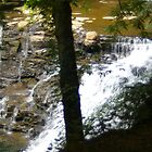 Tennessee Waterfall by PatGoltz