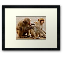 Helping hand.... Framed Print