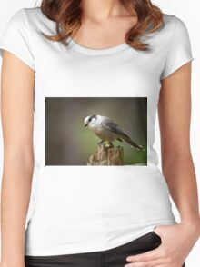 Gray Jay Women's Fitted Scoop T-Shirt