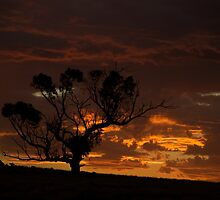 Sunset tonight by Grant Scollay
