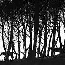 Wood n Horses by EUNAN SWEENEY