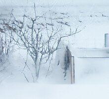 iceworld by NordicBlackbird