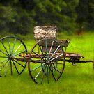 Farm buggy 2..... by DaveHrusecky