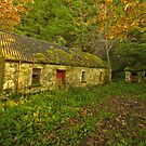 Abandoned  Cottage. Ireland by EUNAN SWEENEY