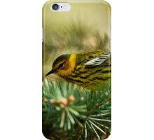 Cap May Warbler iPhone Case/Skin
