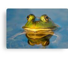 Pond Frog Metal Print