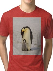 Mother And Baby Penguin  Tri-blend T-Shirt
