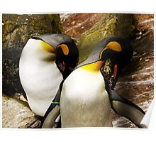 Posing Penguins Poster