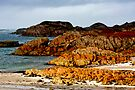 Rocky Coast at Fionnphort by SWEEPER