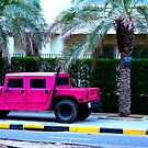 Pretty in Pink by Charles Buchanan
