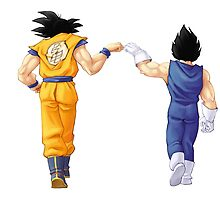Dragon Ball - Goku & Vegetta by Magnate