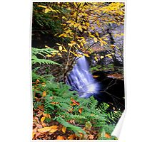 SPACKMANS FALLS Poster