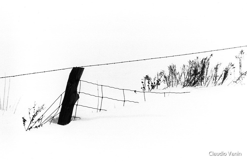 Winter Scene, Fence and Grass by Claudio Vanin