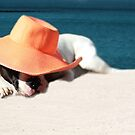Beach Day for Bubba by Shelley Neff