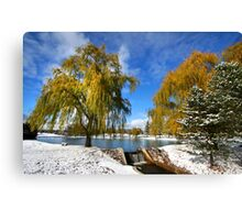 Scenic winter landscape Canvas Print