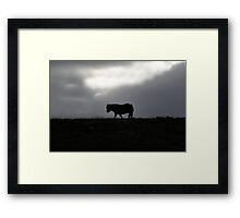 In the hill Framed Print