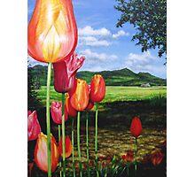 Tulips on the Edge Photographic Print