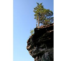 Tree on pictured rocks Photographic Print
