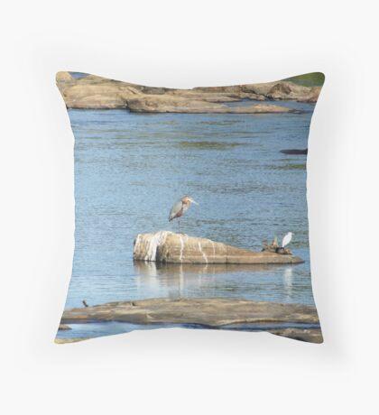 African Stream 2 - WildAfrika Throw Pillow