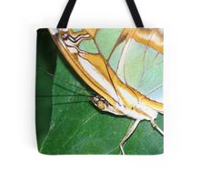 BUTTERFLY 78 Tote Bag